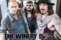 the_winery_dogs2016_2_500x267