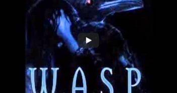 temazo wasp tie your mother down