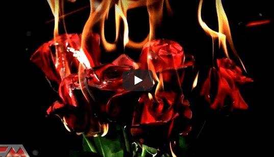 bonfire crazy over you video de rock and blog