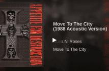 acustco-guns-n-roses