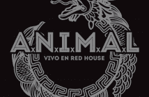 animal-vivo-redhouse-rock-and-blog