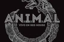 animal-vivo-redhouse-rock-and-blog