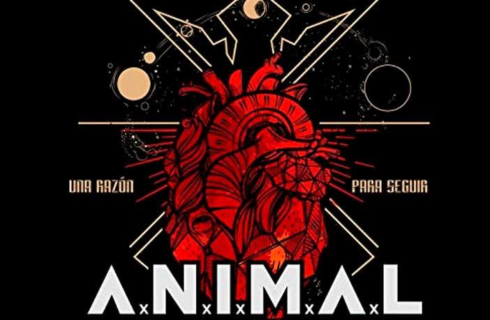 animal-razon-para-seguir