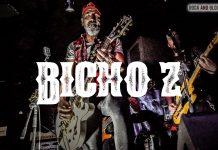 entrevista-bicho-z