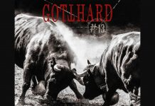 review-gotthard-13
