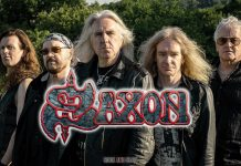 saxon-novedades