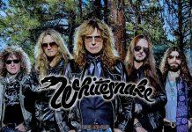 whitesnake-love-stranger